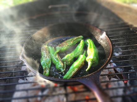Pan-Seared Japanese Shishito Peppers | Culinary Compost Recipes